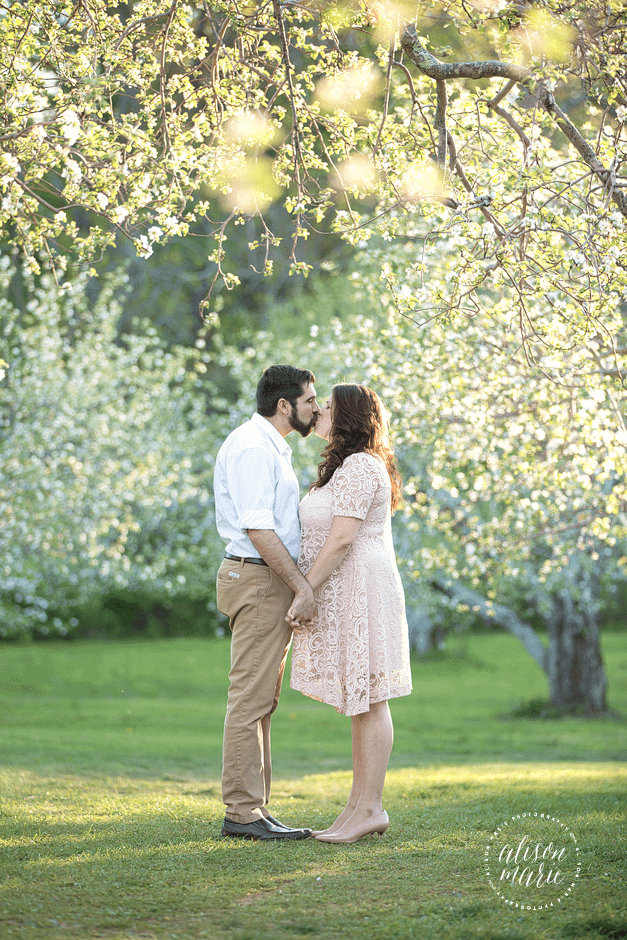 Connecticut Outdoor Portrait Photographer & Wedding Photographer